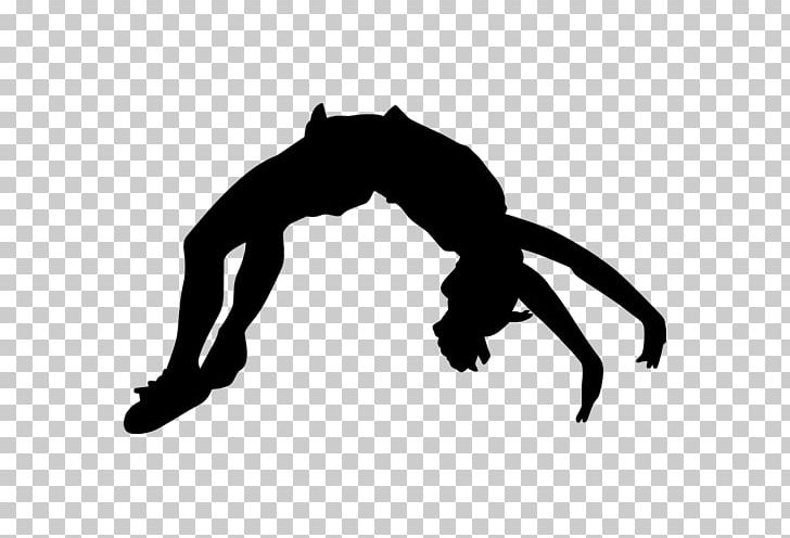 Cheerleading Tumbling Gymnastics Flip PNG, Clipart, Black, Black And White, Cheerleading, Flip, Floor Free PNG Download