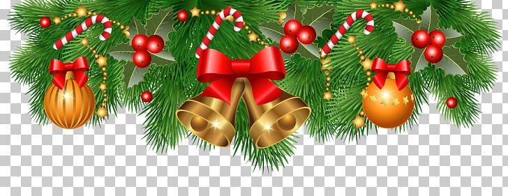 Christmas Decoration Santa Claus Christmas Ornament PNG, Clipart, Branch, Christmas, Christmas Card, Christmas Clipart, Christmas Decoration Free PNG Download