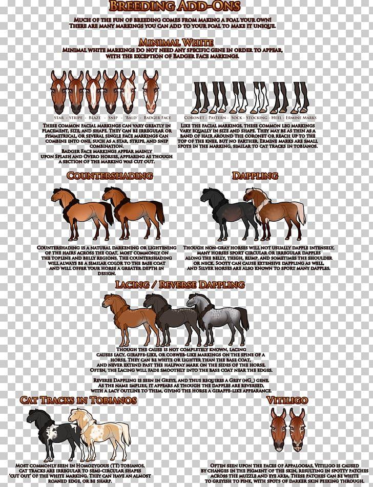 2017 Ford Mustang Horse Mutation Digital Art PNG, Clipart