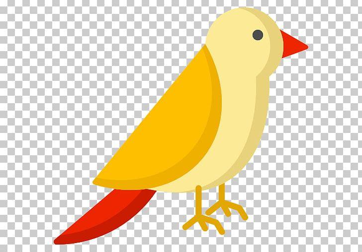 Computer Icons Encapsulated PostScript PNG, Clipart, Artwork, Avian Veterinarian, Beak, Bird, Computer Icons Free PNG Download
