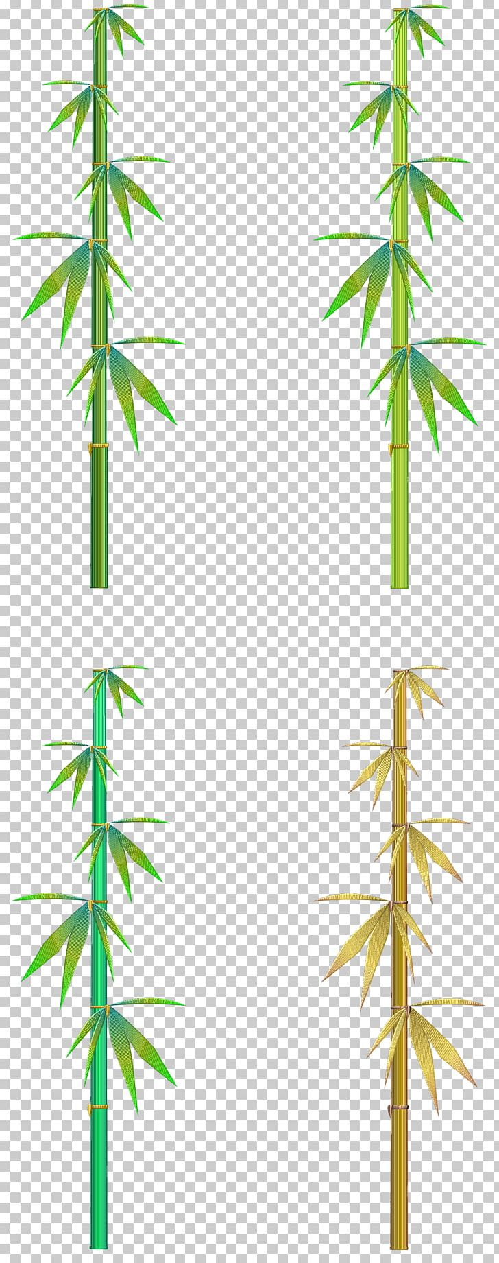 Hemp Line Angle Cannabis PNG, Clipart, Angle, Art, Bambu, Branch, Cannabis Free PNG Download