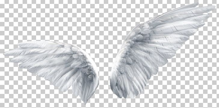 Wing Butterfly Angel PNG, Clipart, Angel, Angels, Angel Wing, Black And White, Blue Free PNG Download