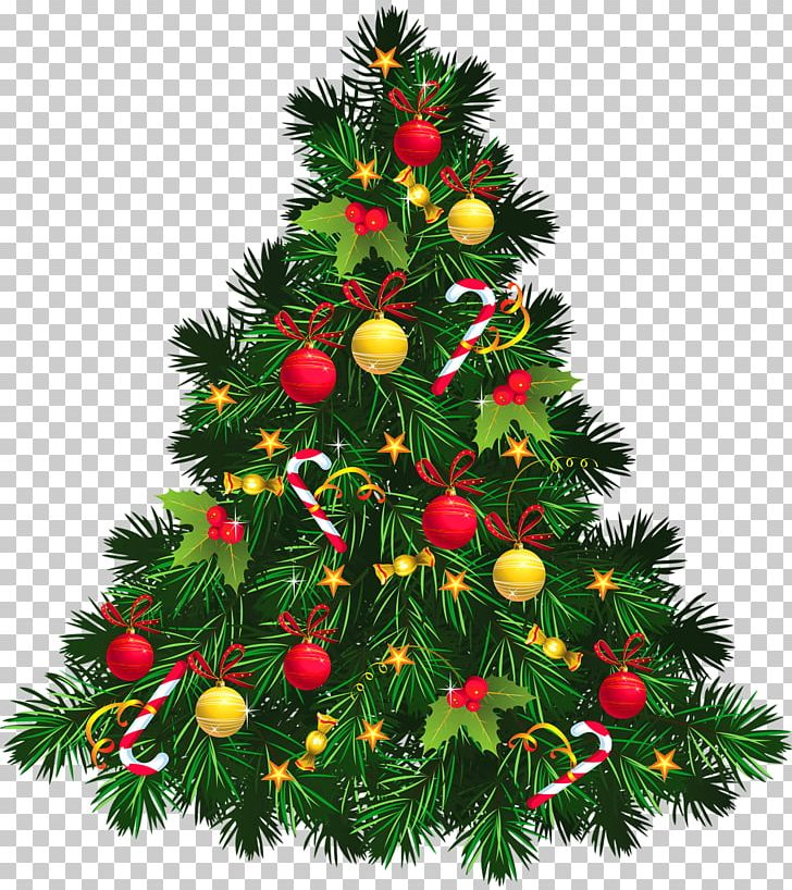 Christmas Tree PNG, Clipart, Christmas Tree Free PNG Download