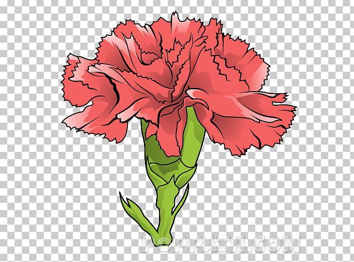 Carnation Floral Design Garden Roses Cut Flowers PNG, Clipart, Artwork, Carnation, Cut Flowers, Dianthus, Flora Free PNG Download