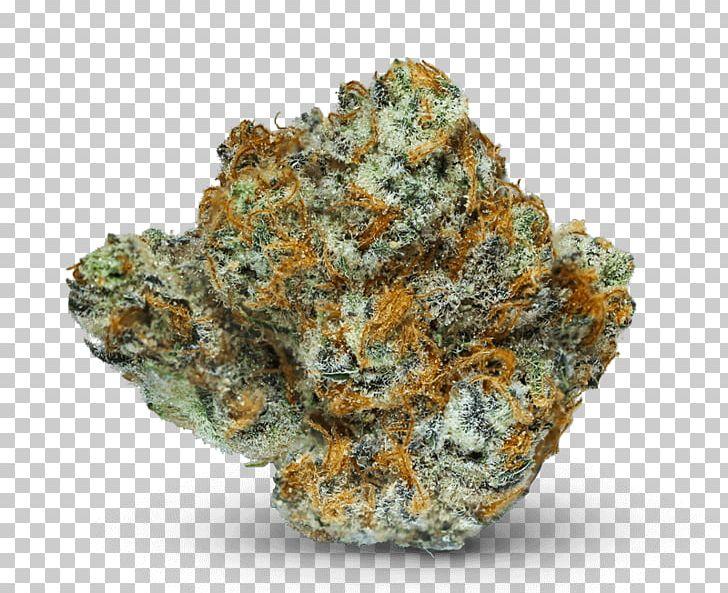 Theory Wellness: Medical Marijuana Terpene Medical Cannabis