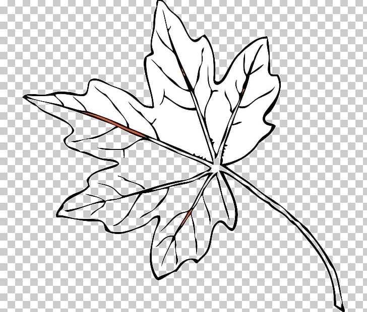 Autumn Leaf Color Red PNG, Clipart, Artwork, Autumn, Autumn Leaf Color, Black And White, Branch Free PNG Download