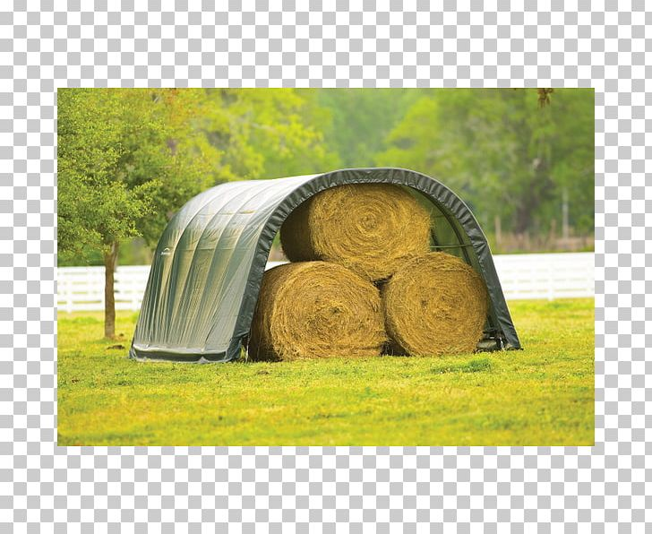 Shelter Shed Hay Andalusian Horse Foot PNG, Clipart, Andalusian Horse, Animal, Farm, Foot, Grass Free PNG Download