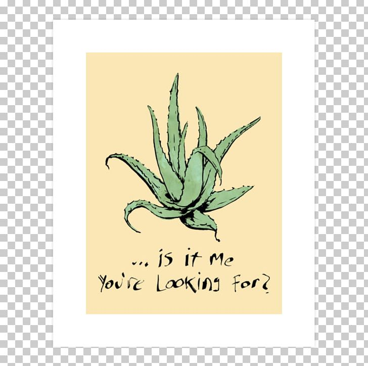 Jugo De Aloe Vera T-shirt Lotion Plant PNG, Clipart, Agave, Aloe, Aloe Vera, Art Print, Clothing Free PNG Download
