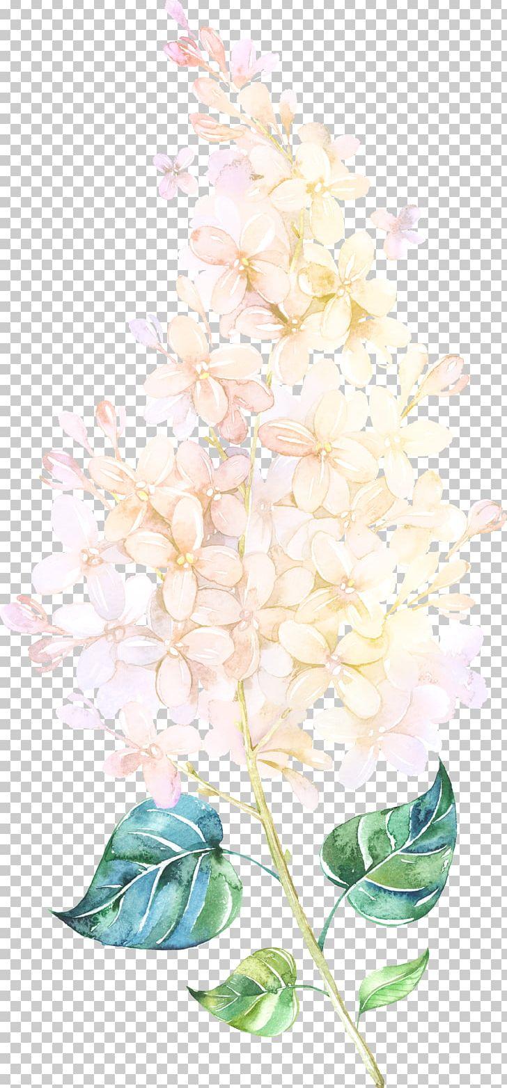 Flower Watercolor Painting Floral Design PNG, Clipart, Blog, Branch, Color, Designer, Download Free PNG Download