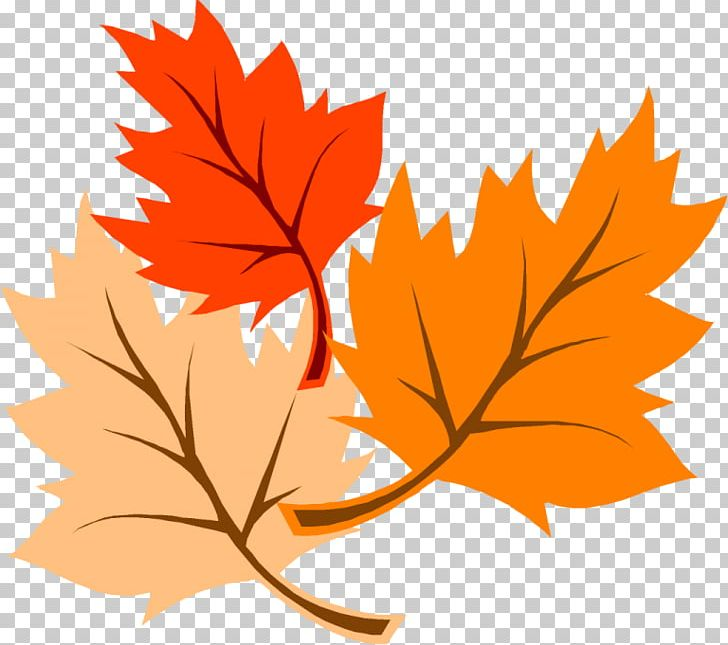 Autumn Leaf Color Thanksgiving PNG, Clipart, Autumn, Autumn Clipart, Autumn Leaf, Autumn Leaf Color, Branch Free PNG Download