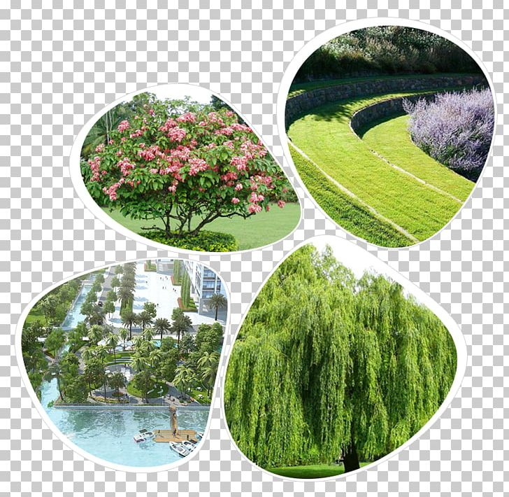 MILLENNIUM PNG, Clipart, Apartment, Condominium, District 9, District 9 Ho Chi Minh City, Ecosystem Free PNG Download
