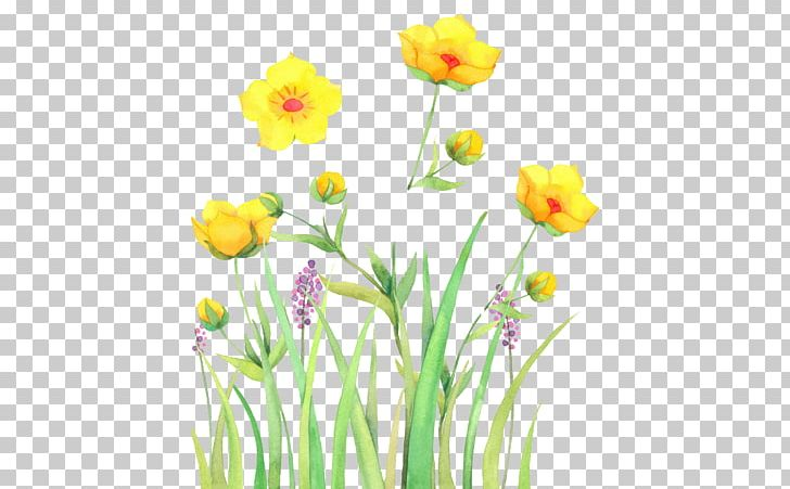 Watercolor: Flowers Watercolor Painting PNG, Clipart, Background, Color, Cut Flowers, Decoration, Drawing Free PNG Download