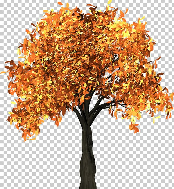 Autumn Leaf Color Tree Branch PNG, Clipart, Autumn, Autumn Leaf Color, Branch, Clip Art, Color Free PNG Download