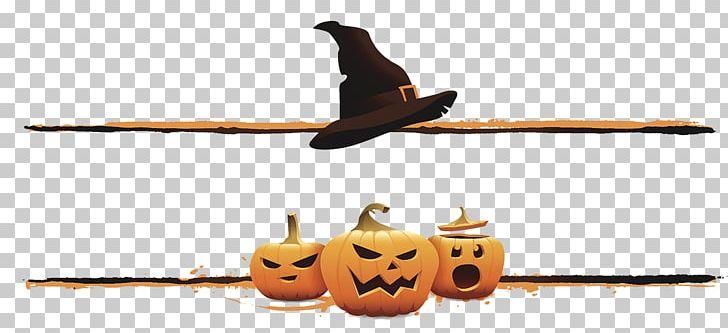 Halloween Boszorkxe1ny Jack-o-lantern Illustration PNG, Clipart, Bird, Boszorkxe1ny, Cartoon, Character, Character Image Free PNG Download