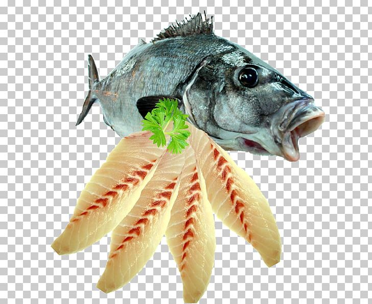 Fish Fillet Seafood Fish Fillet PNG, Clipart, Animals, Animal Source Foods, Blue Grenadier, Blue Moki, Cooking Free PNG Download
