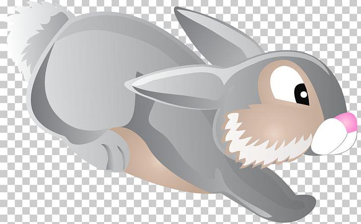 Rabbit Cartoon PNG, Clipart, Bugs Bunny, Bunny, Cartoon, Cartoons, Clipart Free PNG Download