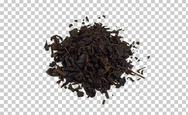 Oolong Green Tea Nilgiri Tea Hōjicha PNG, Clipart, Assam Tea, Bancha, Black Tea, Cafe, Ceylon Tea Free PNG Download
