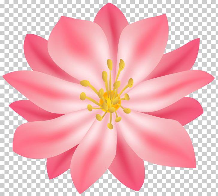 Flower PNG, Clipart, Aquatic Plant, Art, Art Museum, Blossom, Clip Art Free PNG Download
