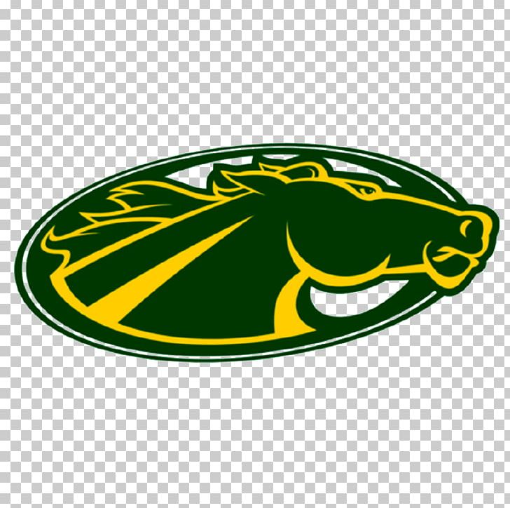 Skidmore College Thoroughbreds Women's Basketball St. Thomas Aquinas College University PNG, Clipart, Academic Degree, Area, Brand, Campus, Campus Tour Free PNG Download