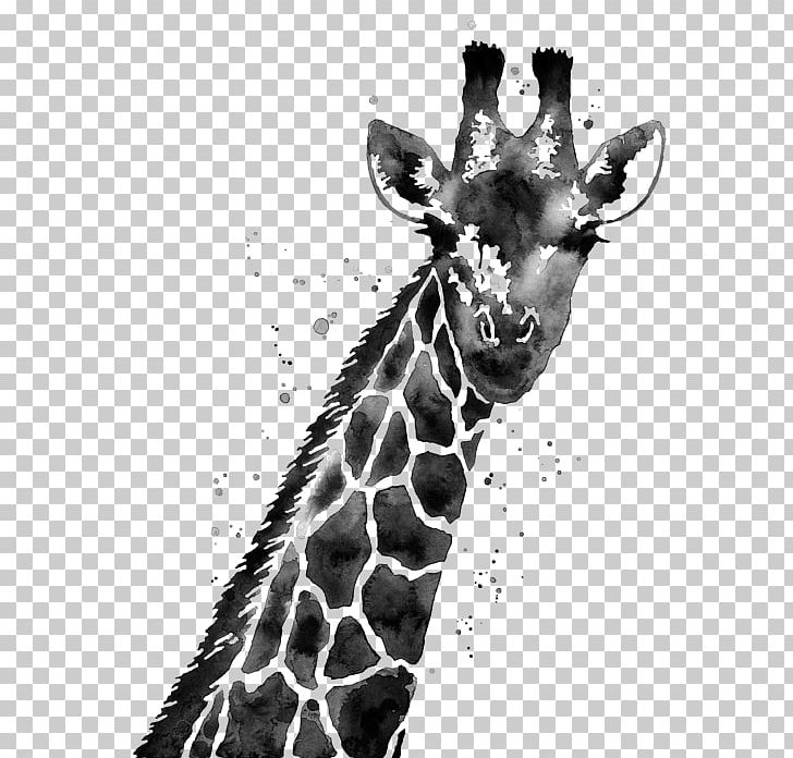 Giraffe White Painting Three Panel Black And White