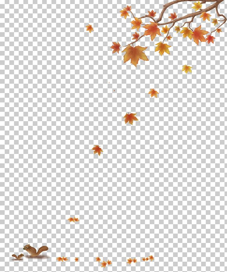 Maple Leaf Autumn PNG, Clipart, Angle, Area, Autumn, Autumn Leaves, Computer Software Free PNG Download