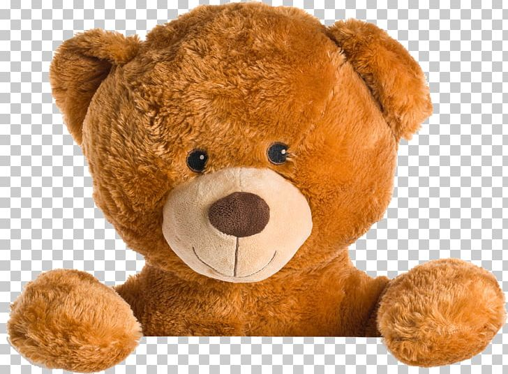 Teddy Bear Giant Panda Stuffed Toy Png Clipart Animals Bear Bears Brown Brown Background Free Png