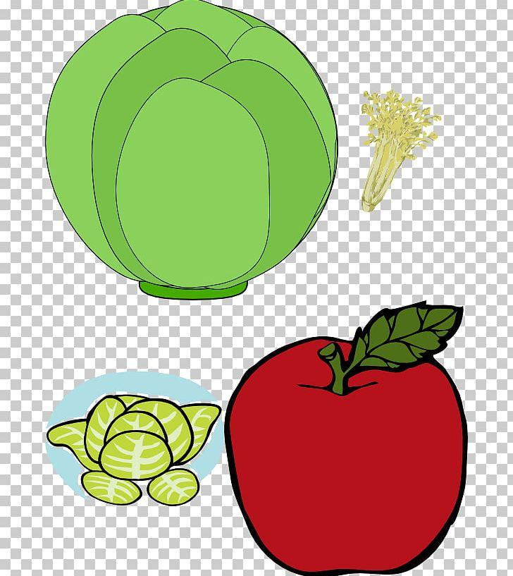 Fruit Vegetable Blueberry Orange Blackberry PNG, Clipart, Apple, Apricot, Artwork, Blackberry, Blueberry Free PNG Download