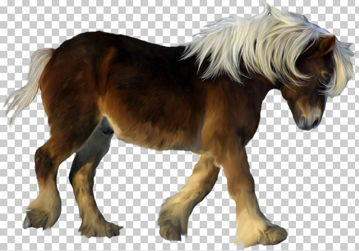 American Miniature Horse My Little Pony Icon PNG, Clipart, American, American Miniature Horse, Animal, Animals, Brown Free PNG Download