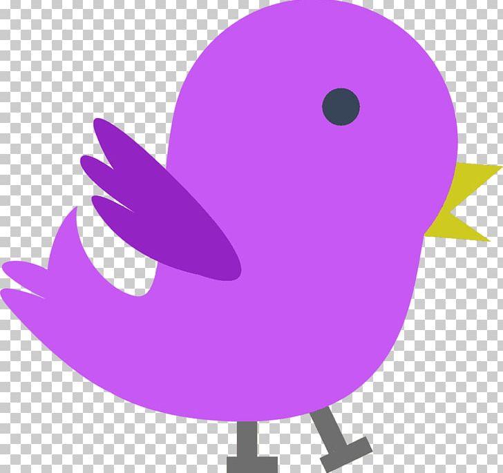 Bird PNG, Clipart, Animals, Art, Artwork, Beak, Bird Free PNG Download