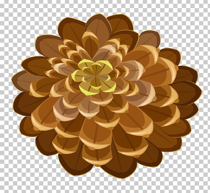 Conifer Cone Pine PNG, Clipart, Christmas Tree, Computer Icons, Cone, Conifer Cone, Conifers Free PNG Download