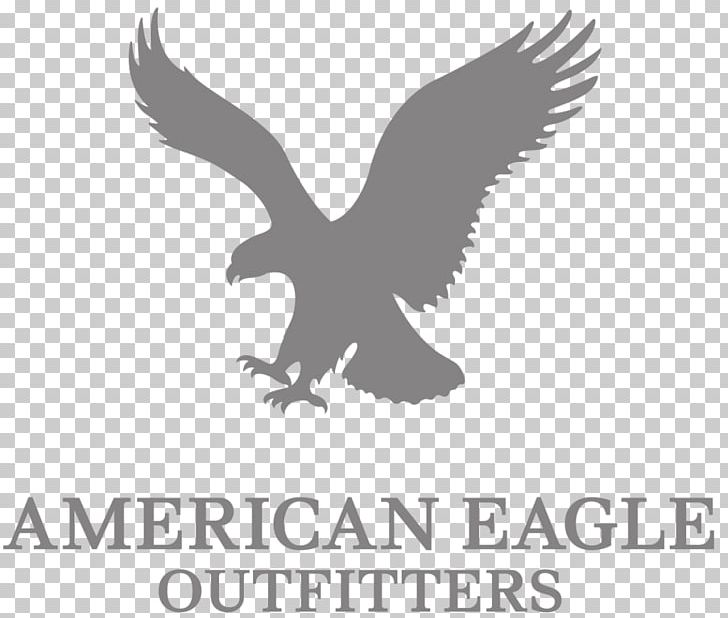 American Eagle Outfitters Retail Clothing Aerie Brand Png Clipart