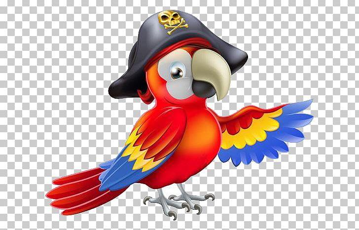 Pirate Parrot Piracy PNG, Clipart, Animals, Balloon Cartoon, Beak, Bird, Boy Cartoon Free PNG Download