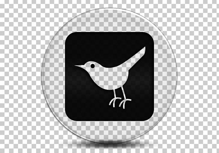 Social Media Beak Bird Twitter Social Network PNG, Clipart, Beak, Bird, Black And White, Internet, Media Free PNG Download
