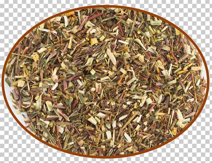 Green Tea Hōjicha Mate Nilgiri Tea PNG, Clipart, Abdominal, Abdominal Pain, Caffeine, Cyclopia, Darjeeling Tea Free PNG Download