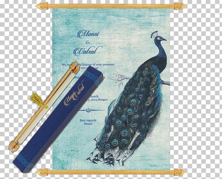 Peafowl Drawing Bird Feather Art PNG, Clipart, Advertising, Animals, Art, Art Museum, Beak Free PNG Download