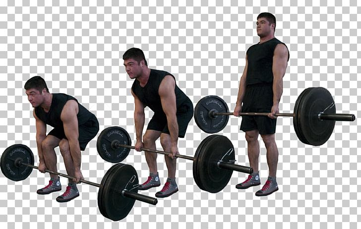 Wondrous Deadlift Physical Exercise Muscle Olympic Weightlifting Lamtechconsult Wood Chair Design Ideas Lamtechconsultcom