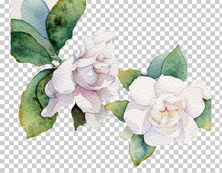 Flower White Leaf Euclidean PNG, Clipart, Decoration, Decorative Patterns, Download, Floristry, Flower Free PNG Download