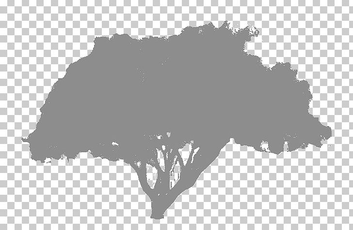 Stock Photography PNG, Clipart, Black, Black And White, Black M, Branch, Highdefinition Video Free PNG Download