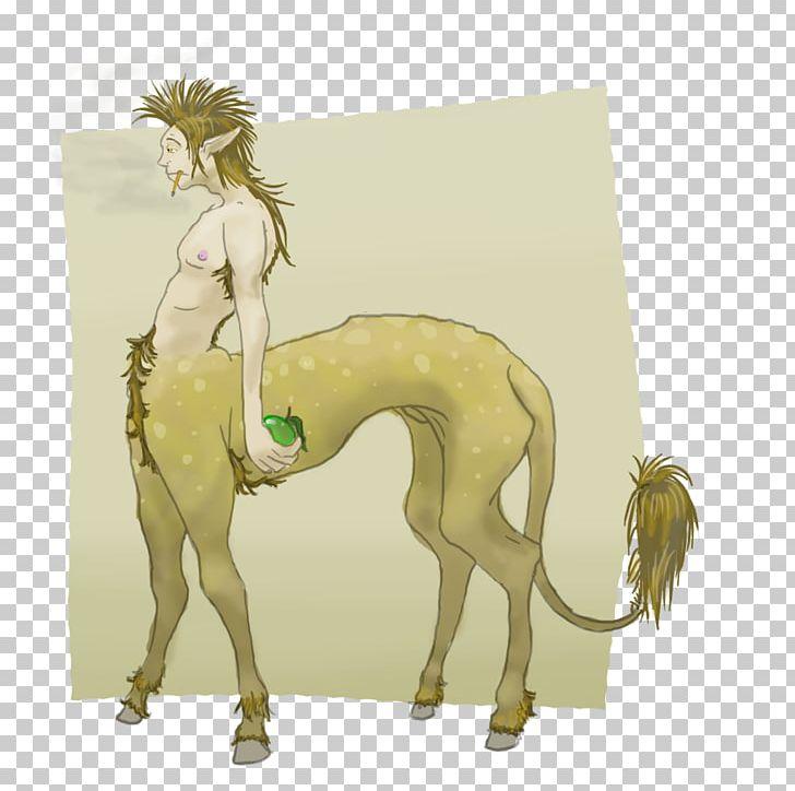 Canidae Dog Camel Mammal PNG, Clipart, Animals, Camel, Camel Like Mammal, Canidae, Carnivoran Free PNG Download
