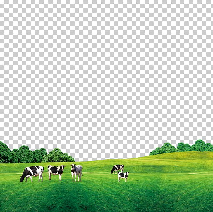 Cattle Cows Milk Png Clipart Biome Computer Icons