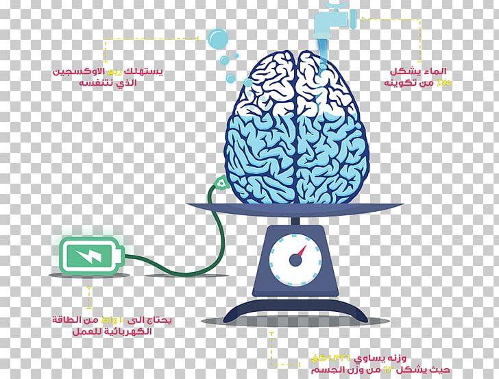 Human Brain Anatomy Artificial Brain PNG, Clipart, Anatomy, Artificial Brain, Brain, Diagram, Drawing Free PNG Download