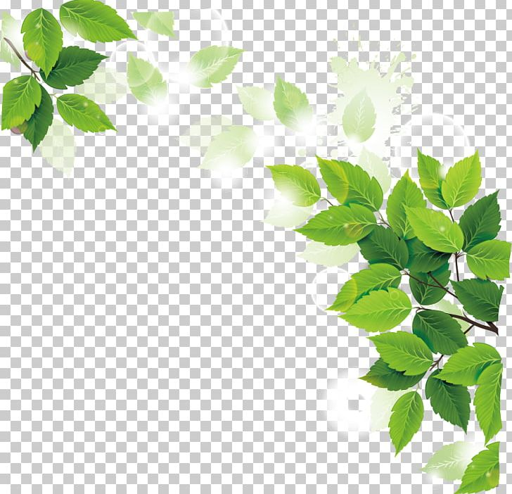 Ramadan Iftar Muslim Fasting In Islam Allah PNG, Clipart, Branch, Christmas Decoration, Cleaner, Cleaning, Cleanliness Free PNG Download