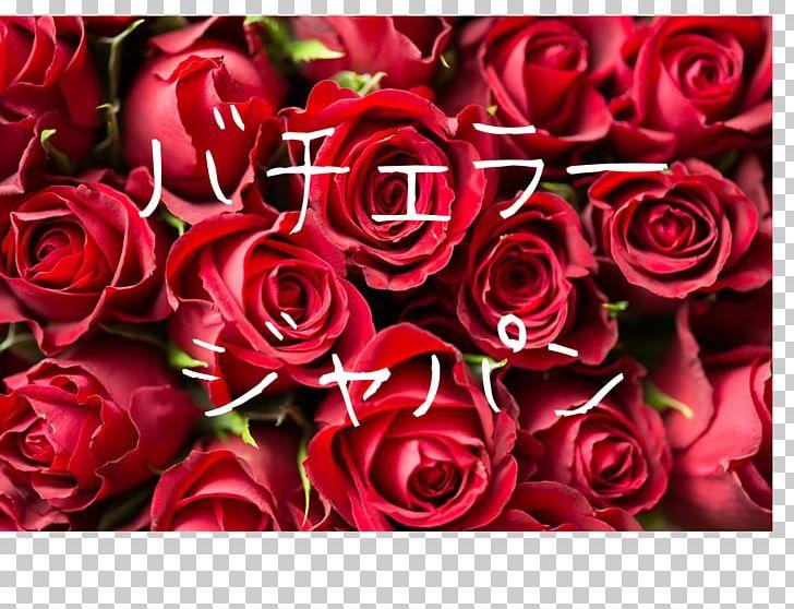 Rose Desktop Red Flower Png Clipart Blue Blue Rose