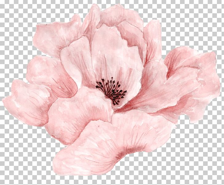 Pink Flowers Pink Flowers Watercolor Painting PNG, Clipart, Cartoon, Download, Encapsulated Postscript, Flower, Flower Bouquet Free PNG Download