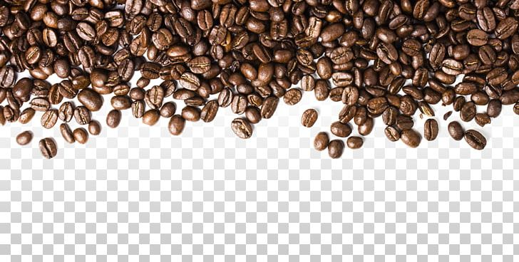 Coffee Bean Espresso Cafe PNG, Clipart, Bean, Beans, Cafe, Cocoa Bean, Coffea Free PNG Download