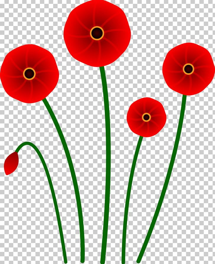 Poppy Flower Red Png Clipart Armistice Day California Poppy