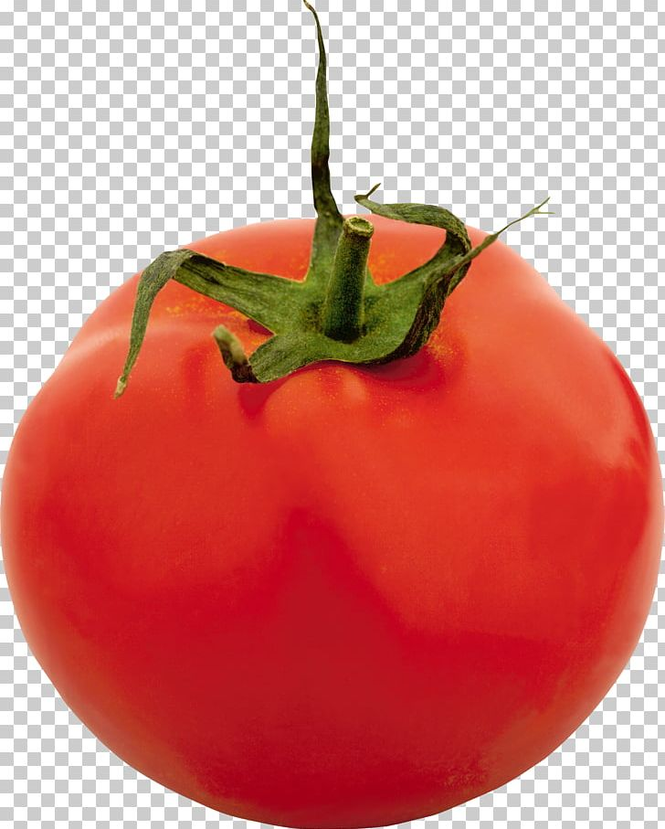 Tomato PNG, Clipart, Tomato Free PNG Download