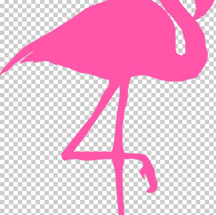 Flamingo Graphics Silhouette PNG, Clipart, Animals, Beak, Bear Clipart, Bird, Can Stock Photo Free PNG Download
