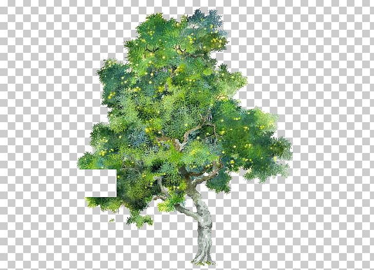 Tree Watercolor Painting Png Clipart Branch Cartoon Cartoon Trees Encapsulated Postscript Family Tree Free Png Download Download 85,810 cartoon tree free vectors. tree watercolor painting png clipart