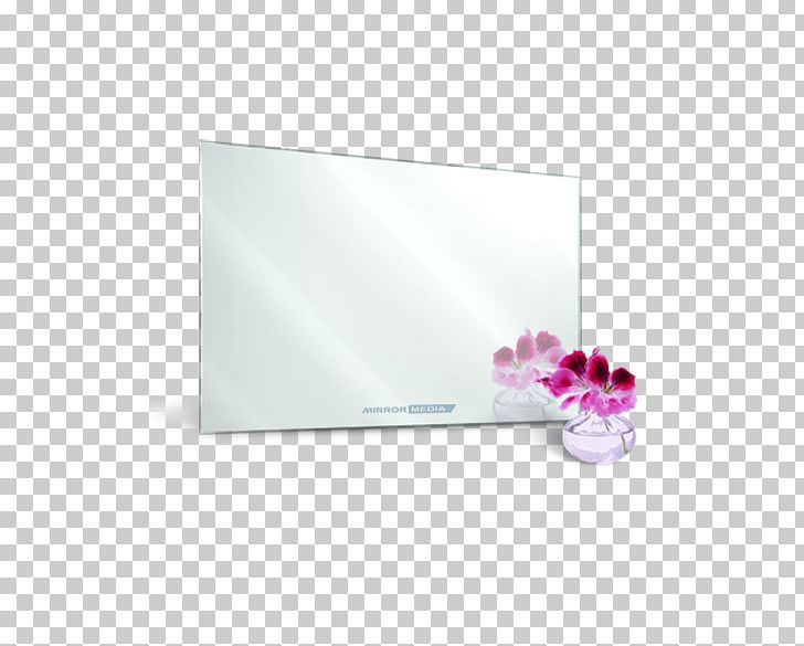 Mirror TV Television 360 Degree Trade Solution Pvt. Ltd. Manufacturing PNG, Clipart, Company, Delhi, Export, Flower, India Free PNG Download